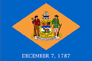 Official Delaware state flag.