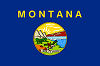Official State Flag of Montana.