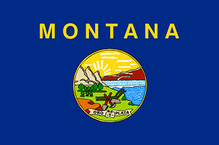 Official Montana state flag.
